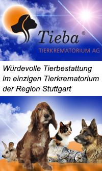Banner Tieba